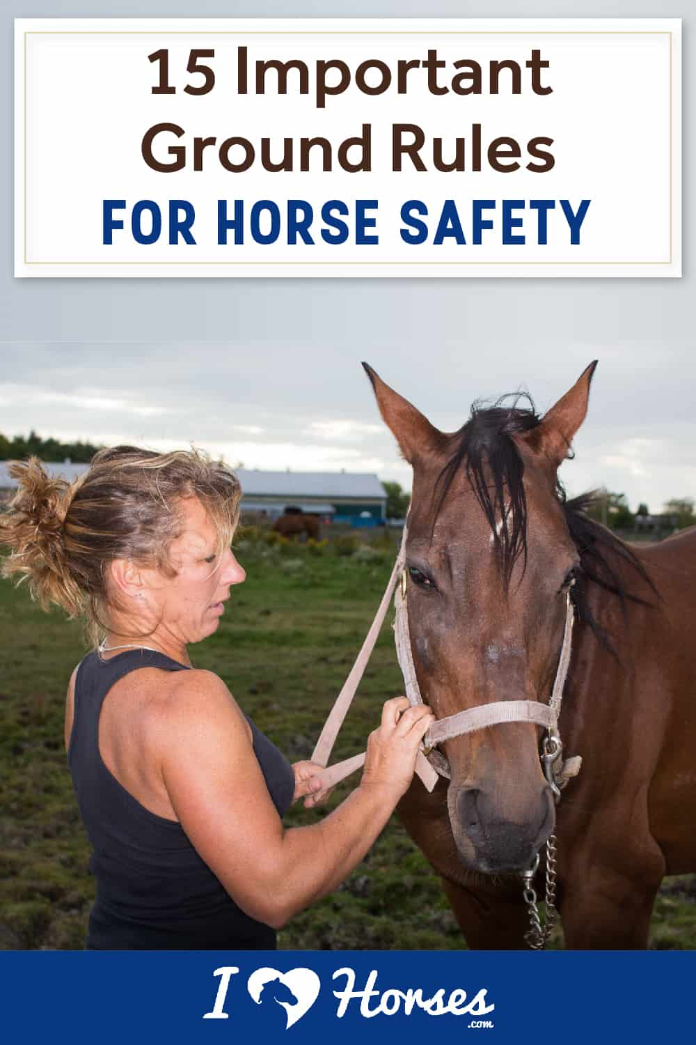 15 Important Ground Rules For Horse Safety