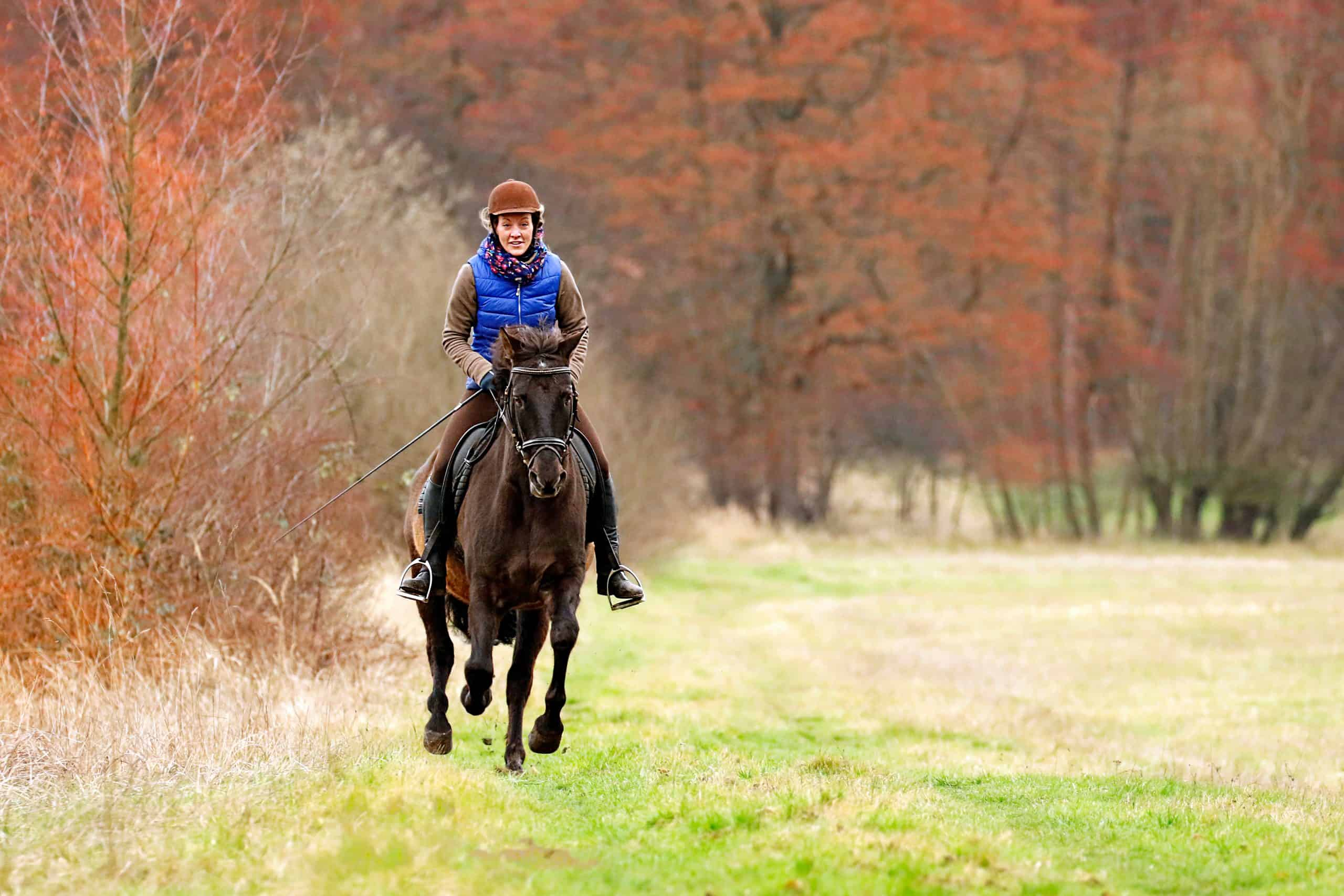 People horse riding girl woman jockey fields forests cantering galloping equestrian