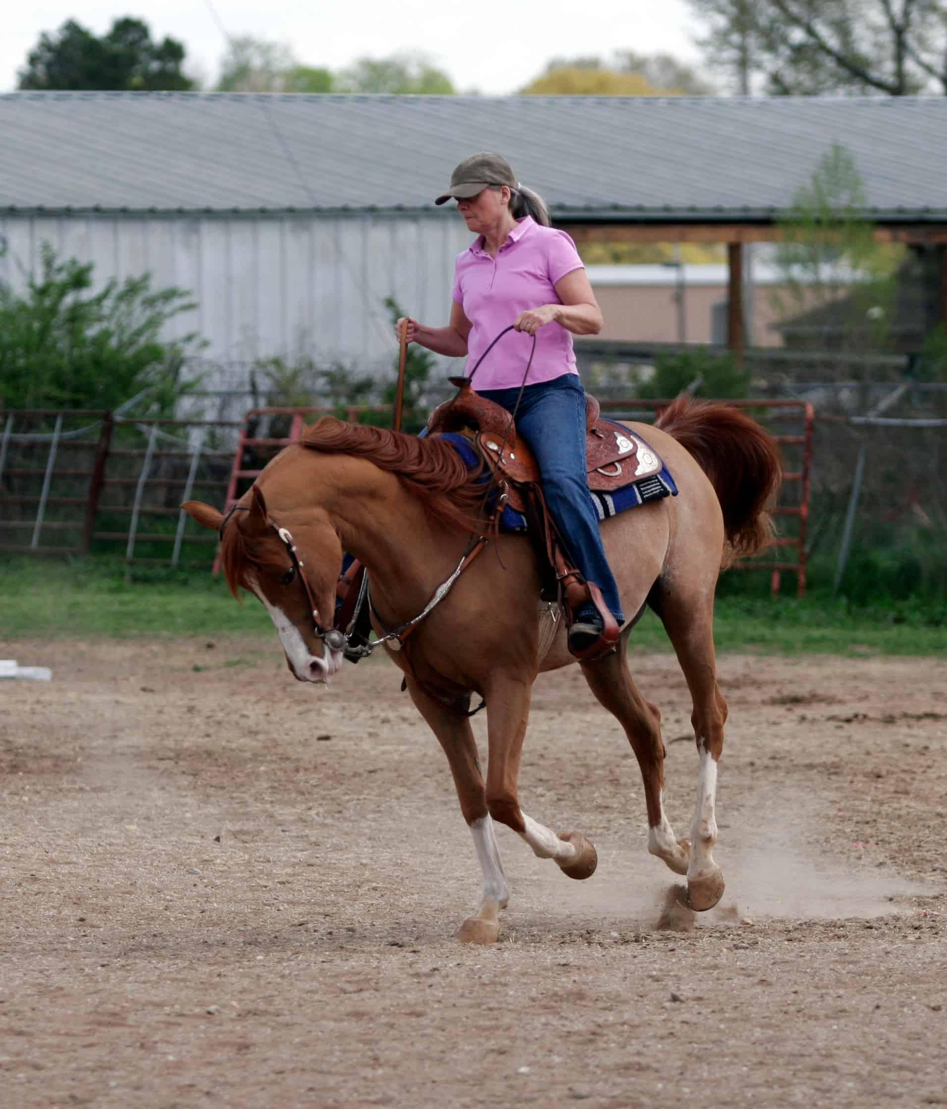 Woman cantering purebred arabian horse in western pleasure