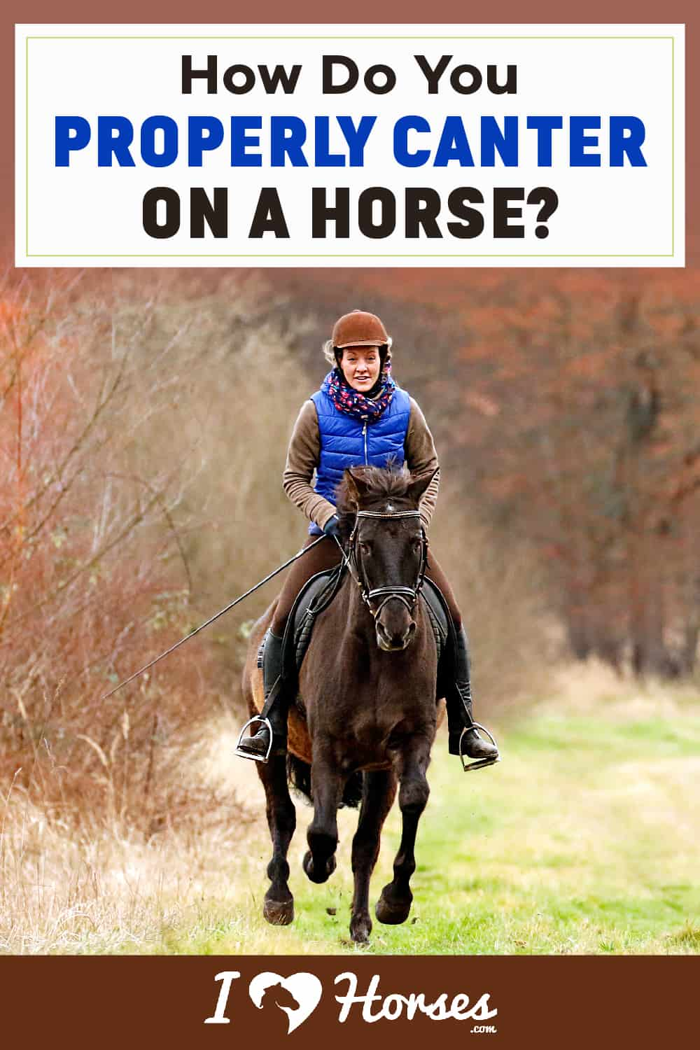 How Do You Properly Canter On A Horse-01-01