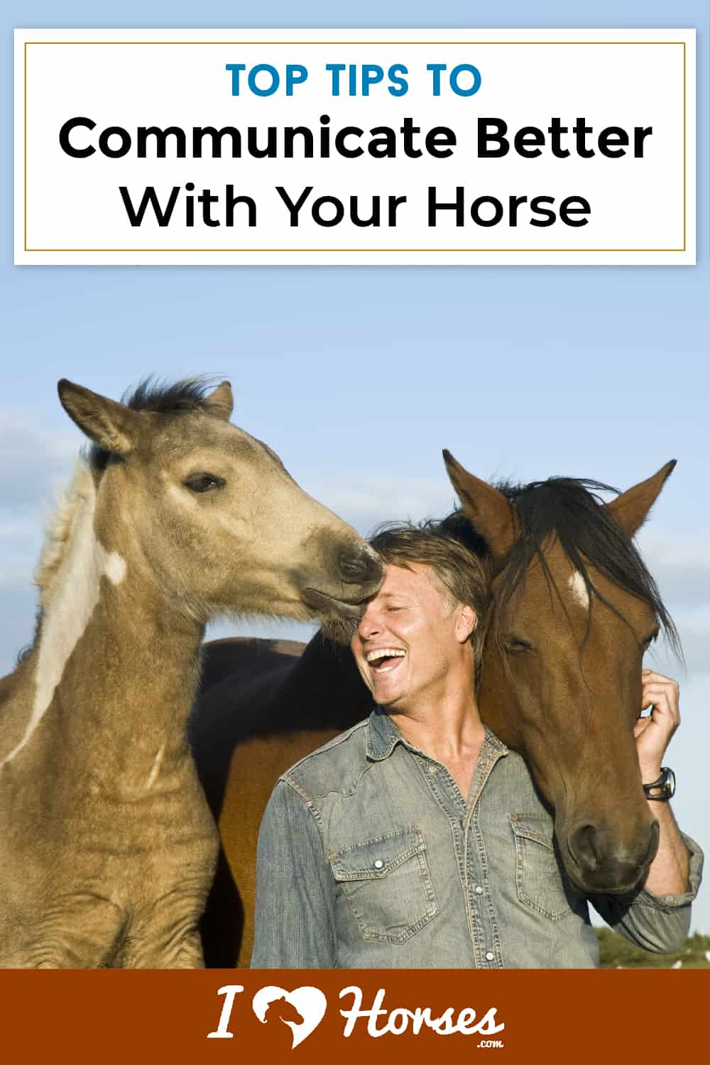 3 Key Ways To Communicate With Your Horse-02-01