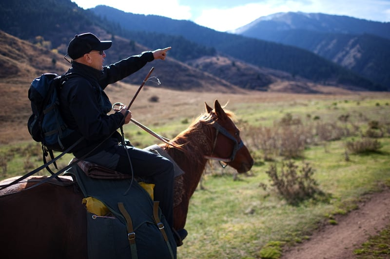 tips for those starting out in horseback riding