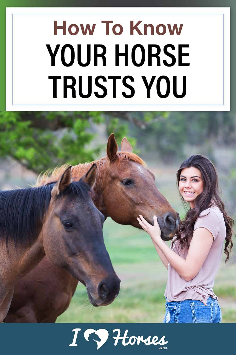 Ways To Know Your Horse Trusts You-02-01