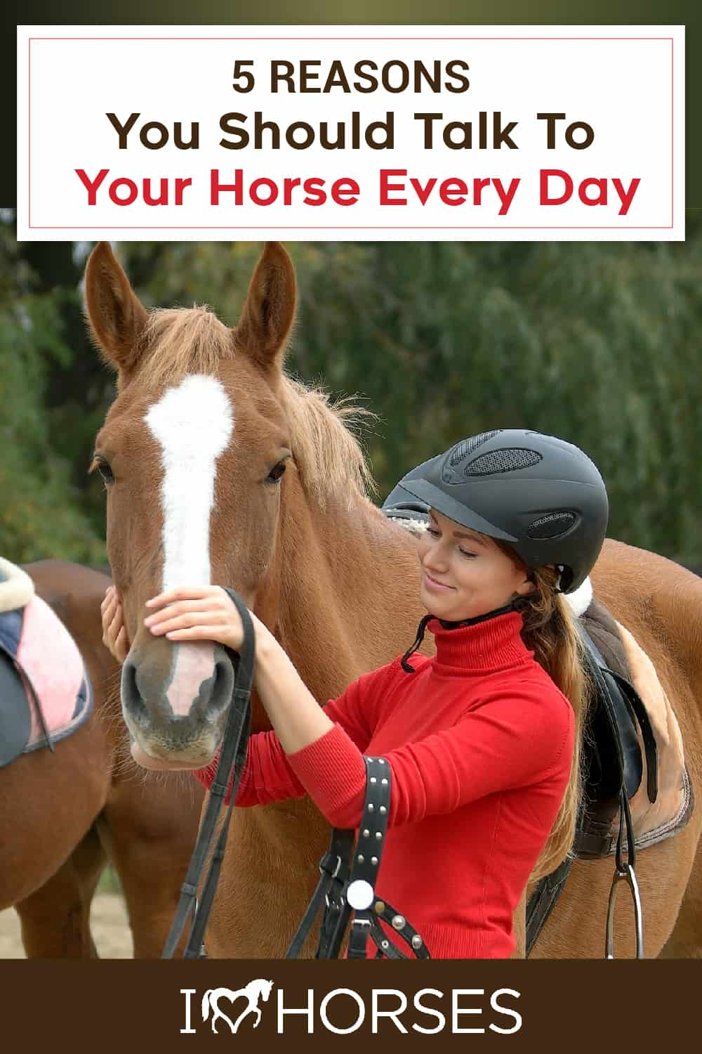 5 Reasons To Talk To Your Horse