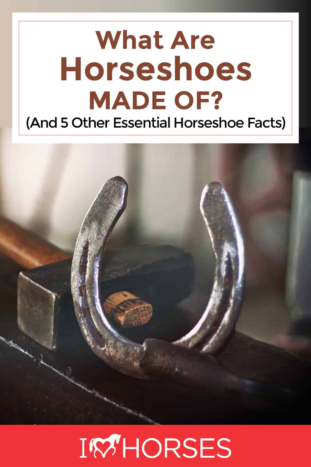 6 Essential Things To Know About Horseshoes