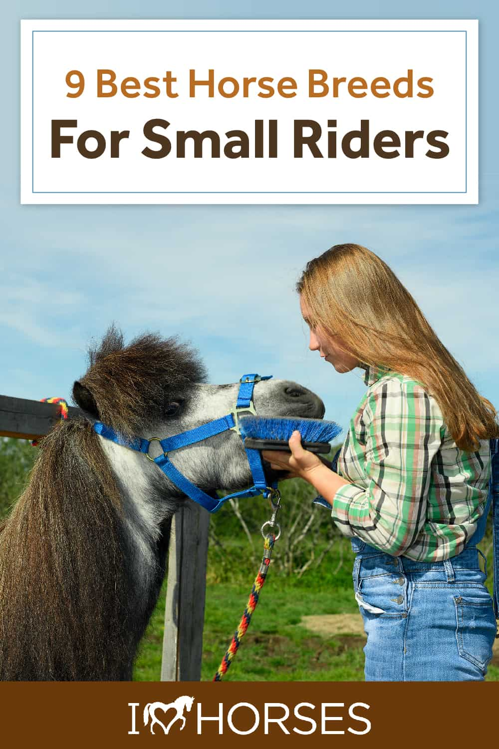 9 Best Horse Breeds For Small Riders