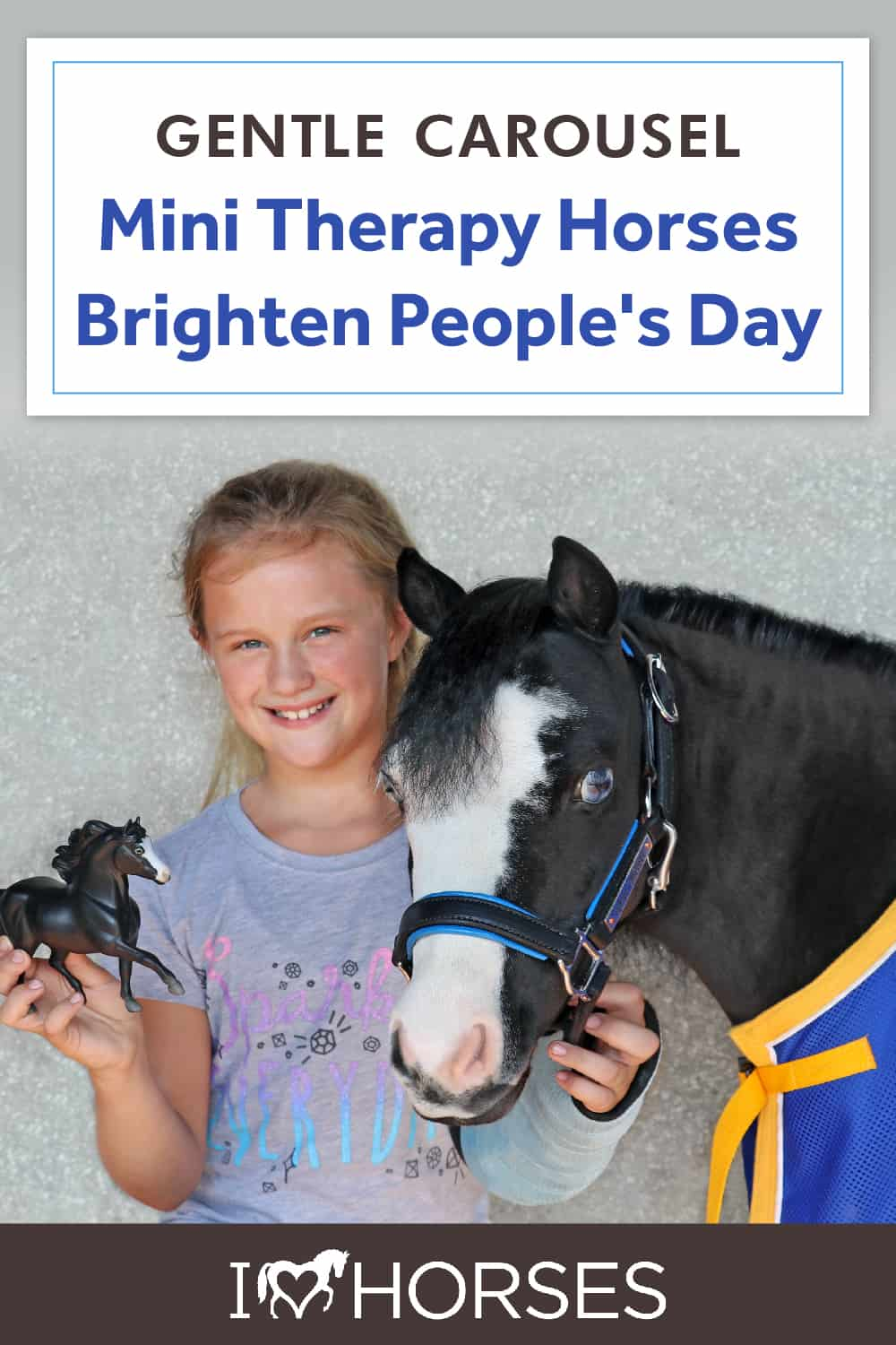 All About Gentle Carousel Mini Therapy Horses