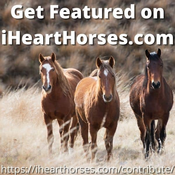 Get featured on iHeartHorses