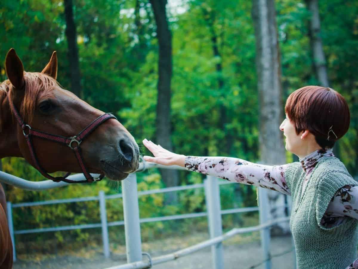 Woman afraid of horse