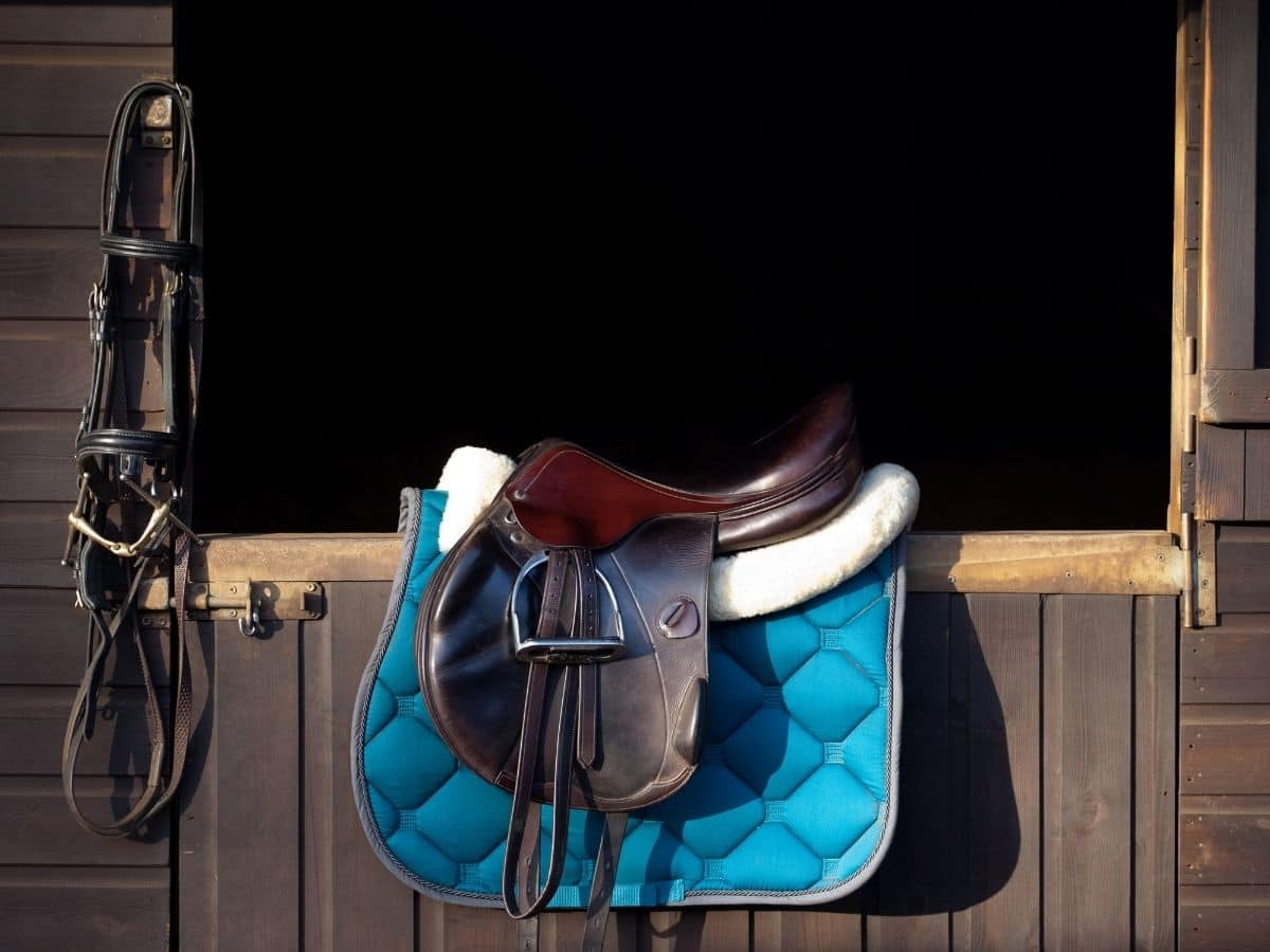 Saddle on barn door