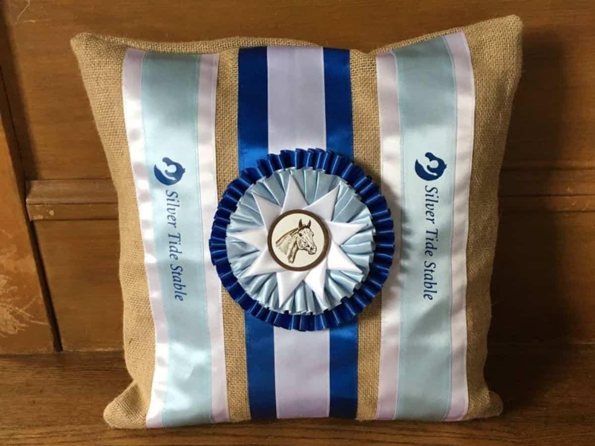 Show ribbon pillow