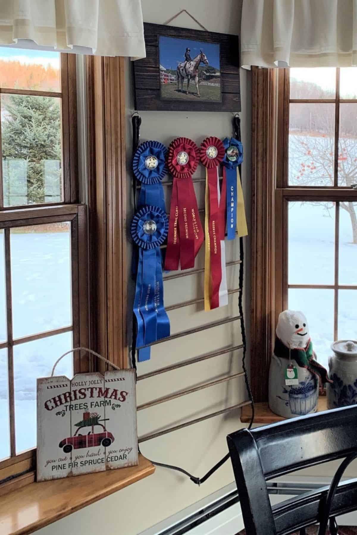 Horse ribbon display on wall