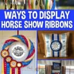 Horse show ribbon collage