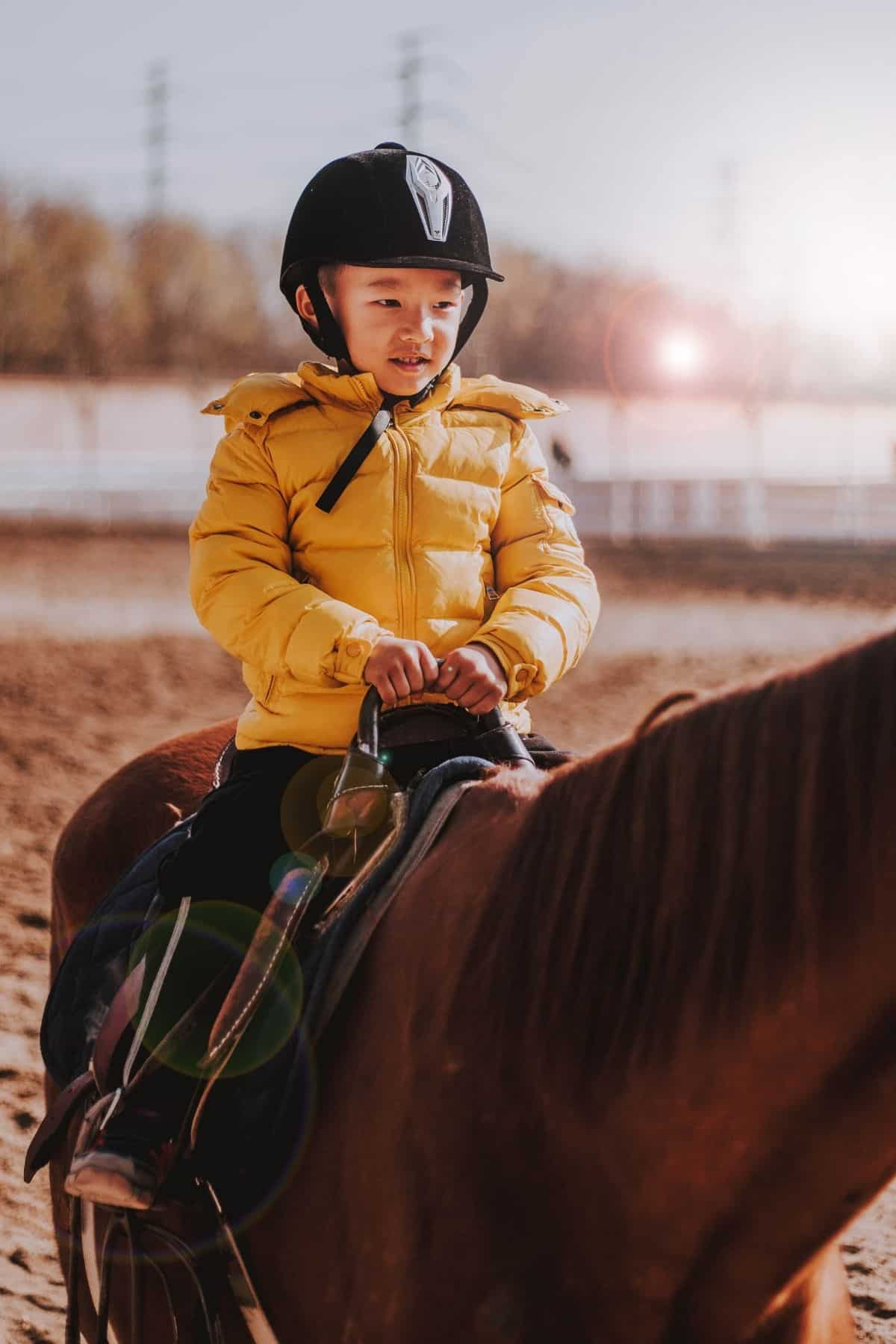 Child in yellow coat on horse