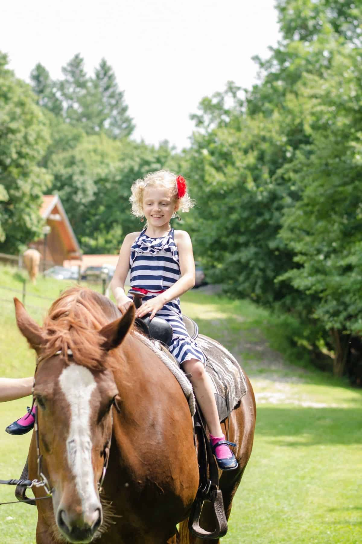 Blonde girl in pigtails on top of brown horse