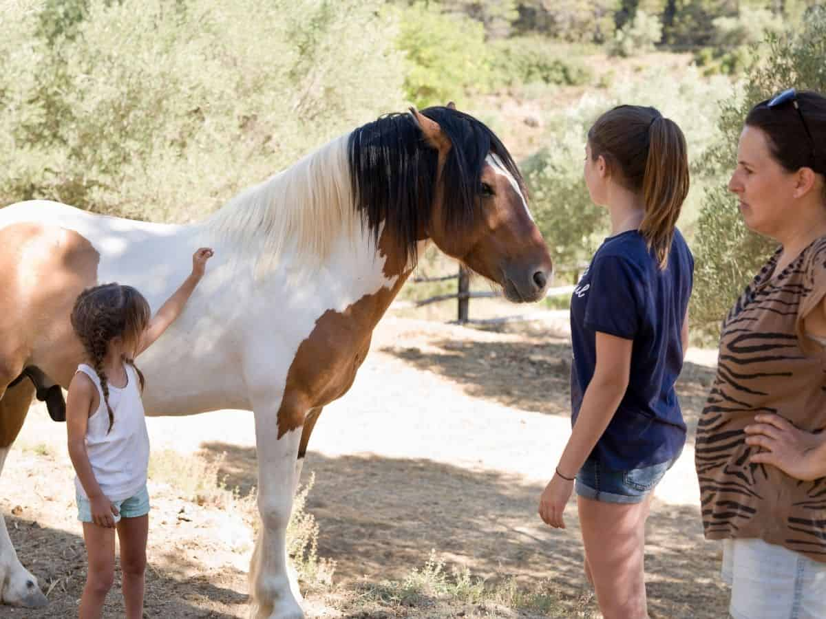 Children beside white and brown pony
