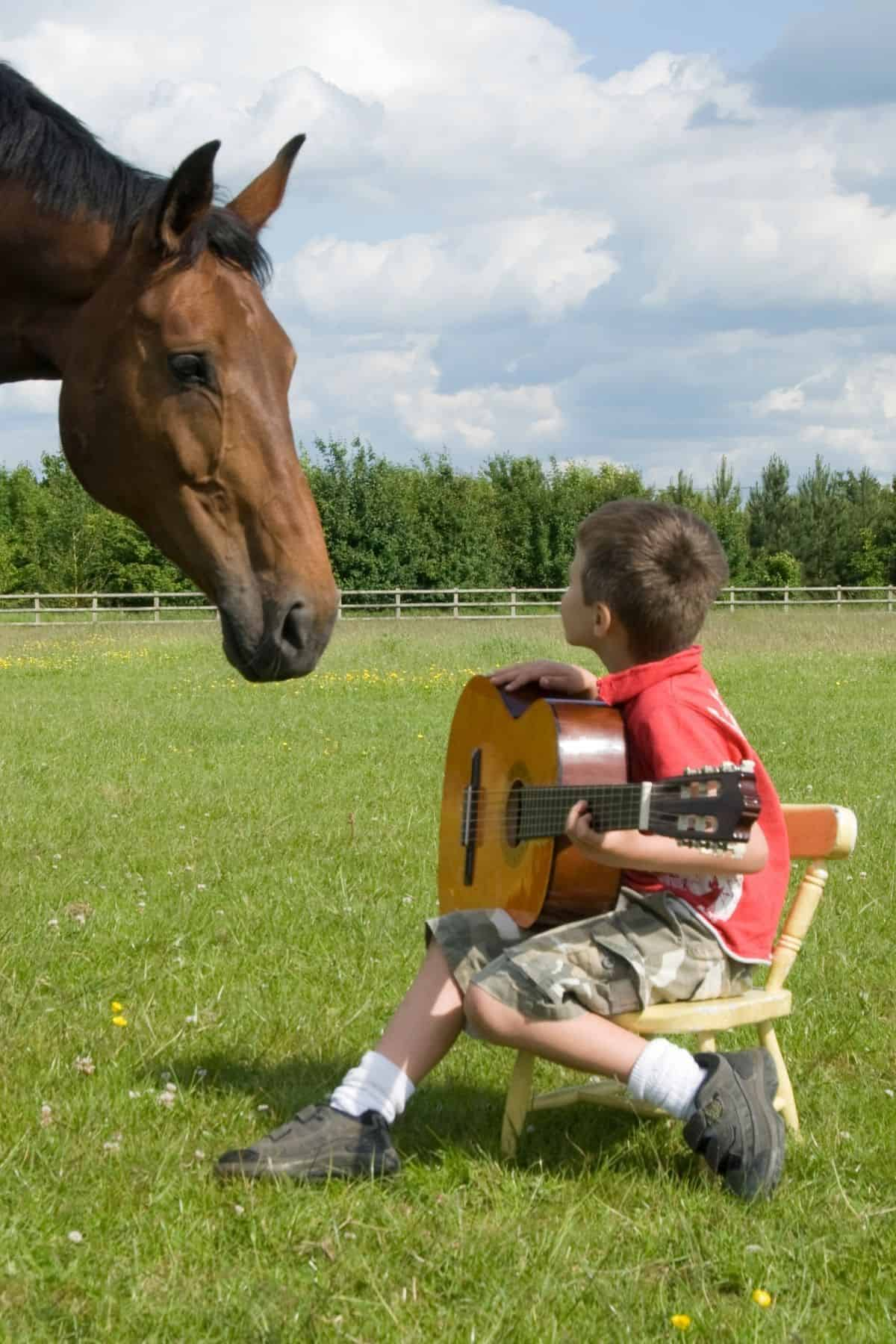 Little boy playing guitar in front of brown horse