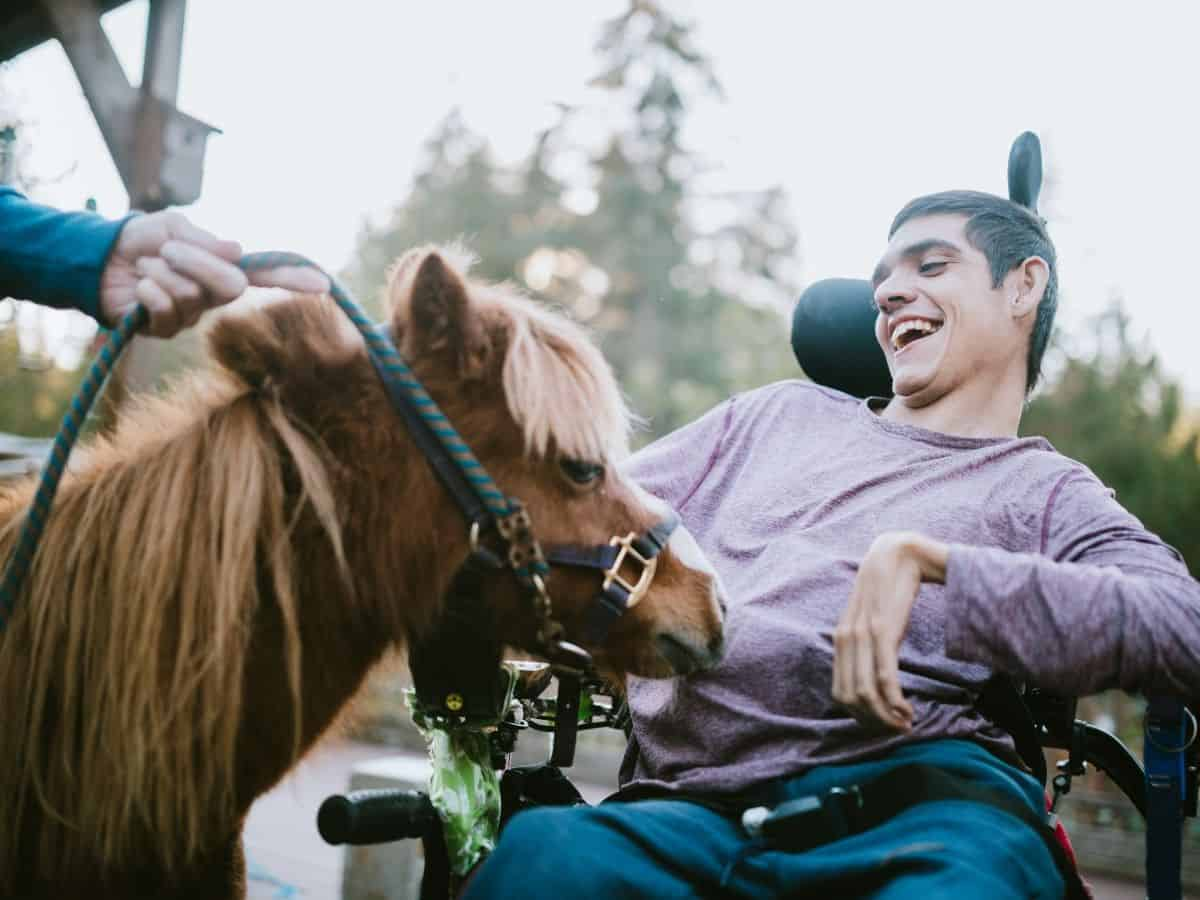 Pony by man in wheelchair