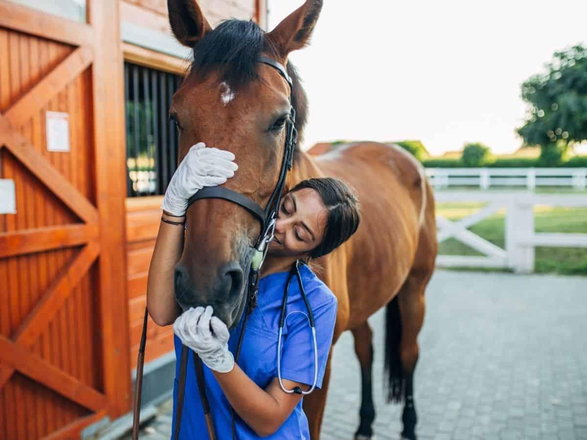 Woman in blue scrubs hugging horse