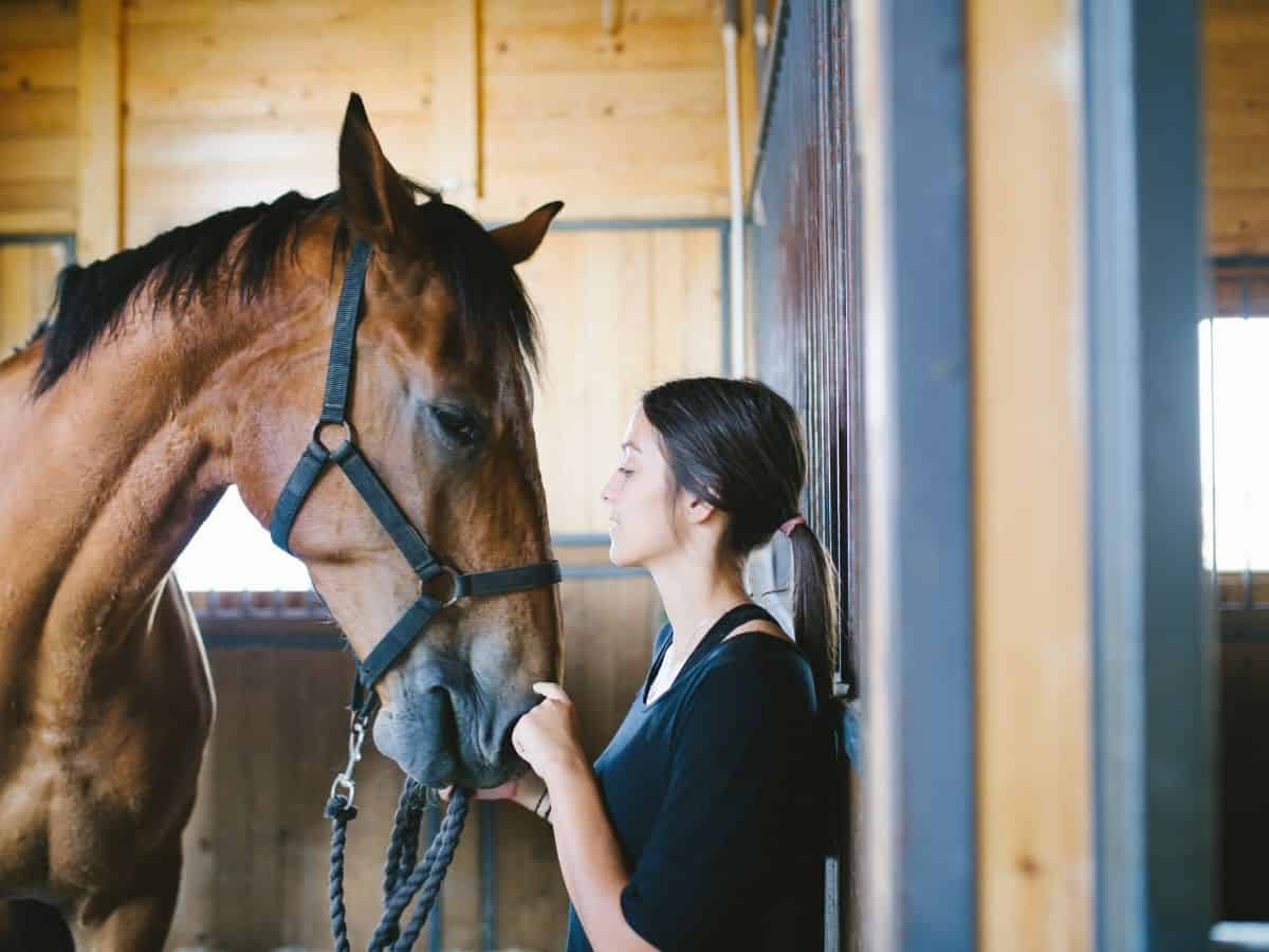 Woman in black shirt ins tall with brown horse