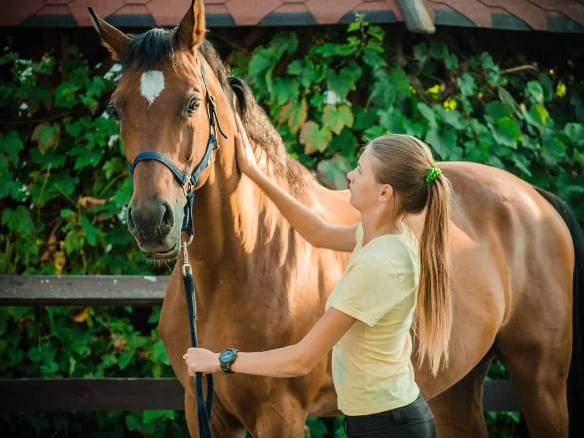 Woman in yellow petting brown horse