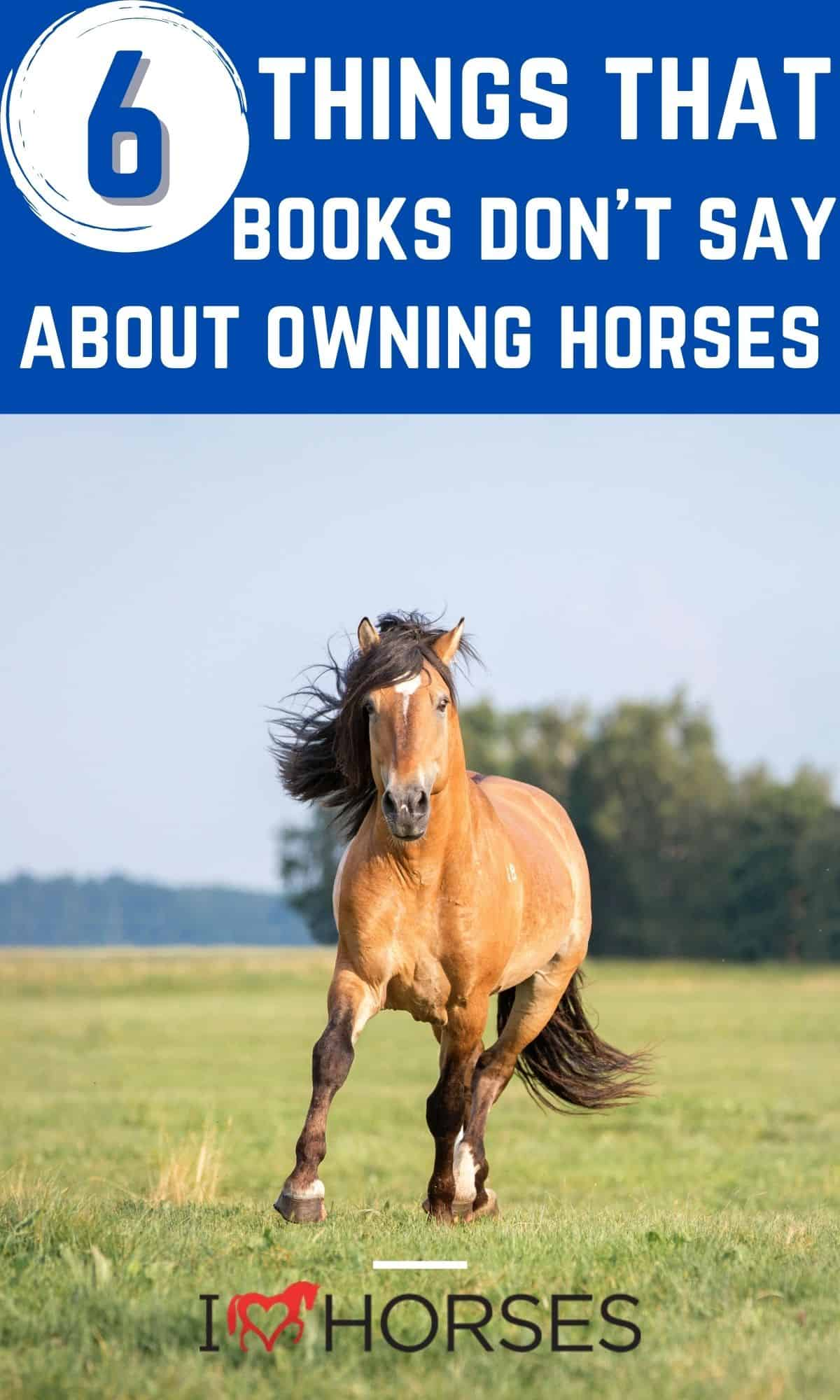 Tan horse running in field