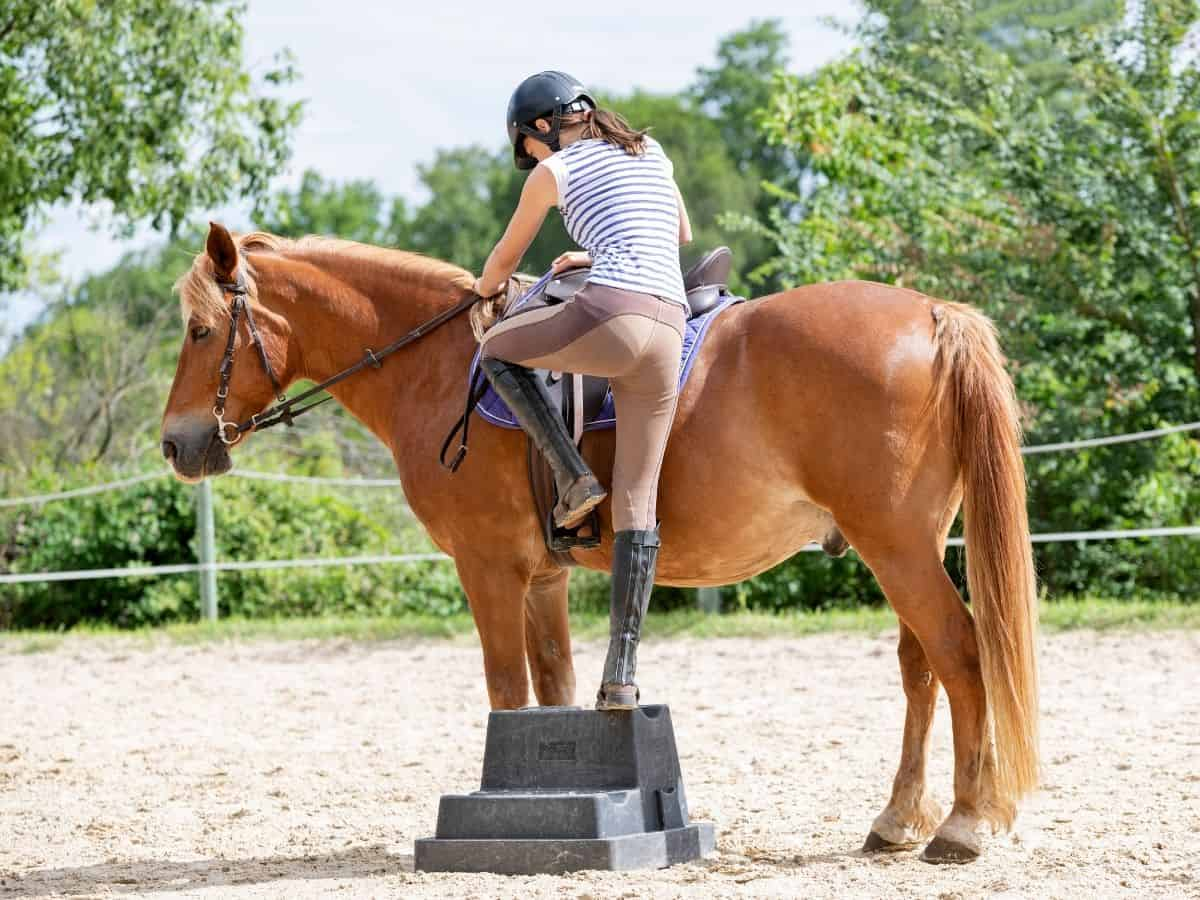 Woman using mounting block to get onto brown horse