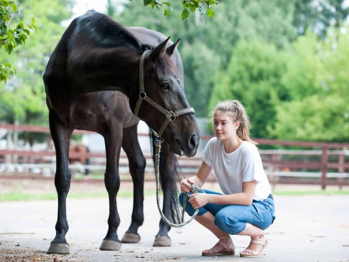 Woman in white shirt and jeans squatting beside black horse