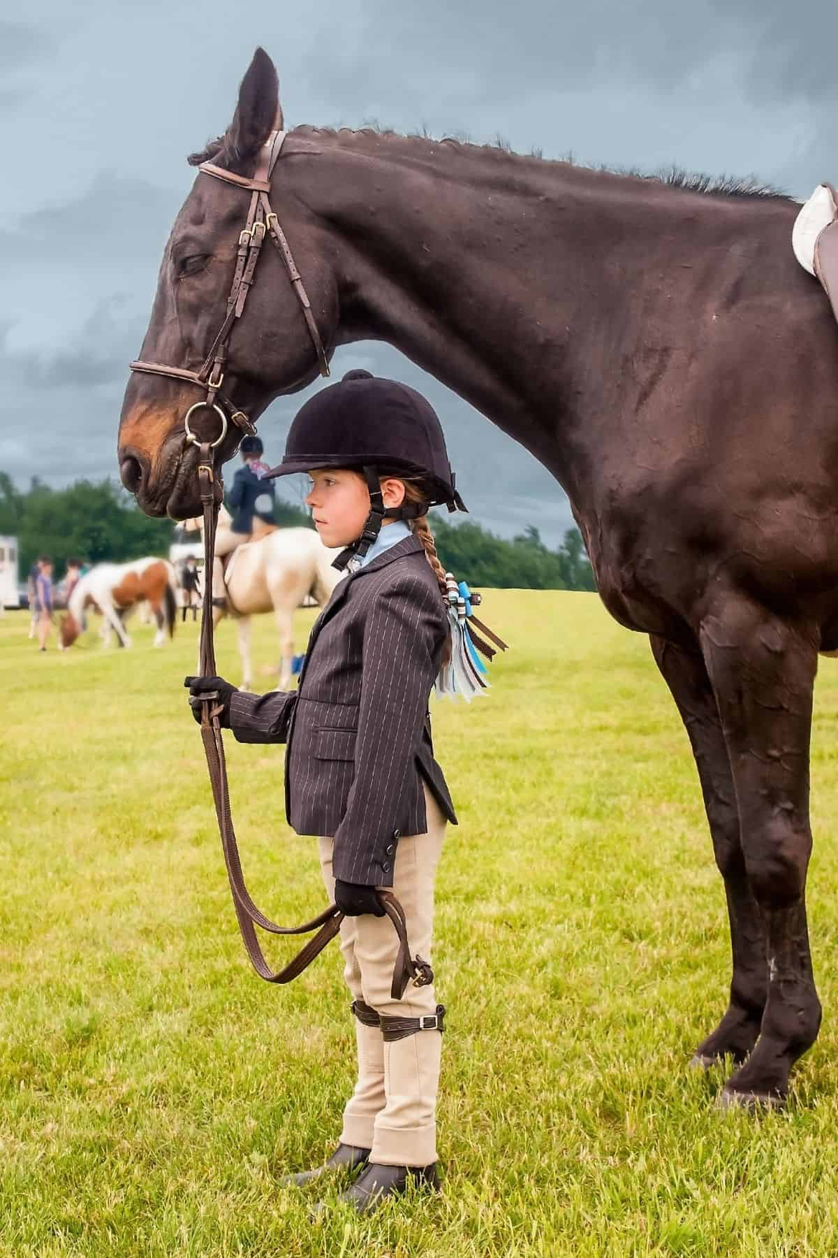 small girl in riding outfit with helmet holding reigns of brown horse
