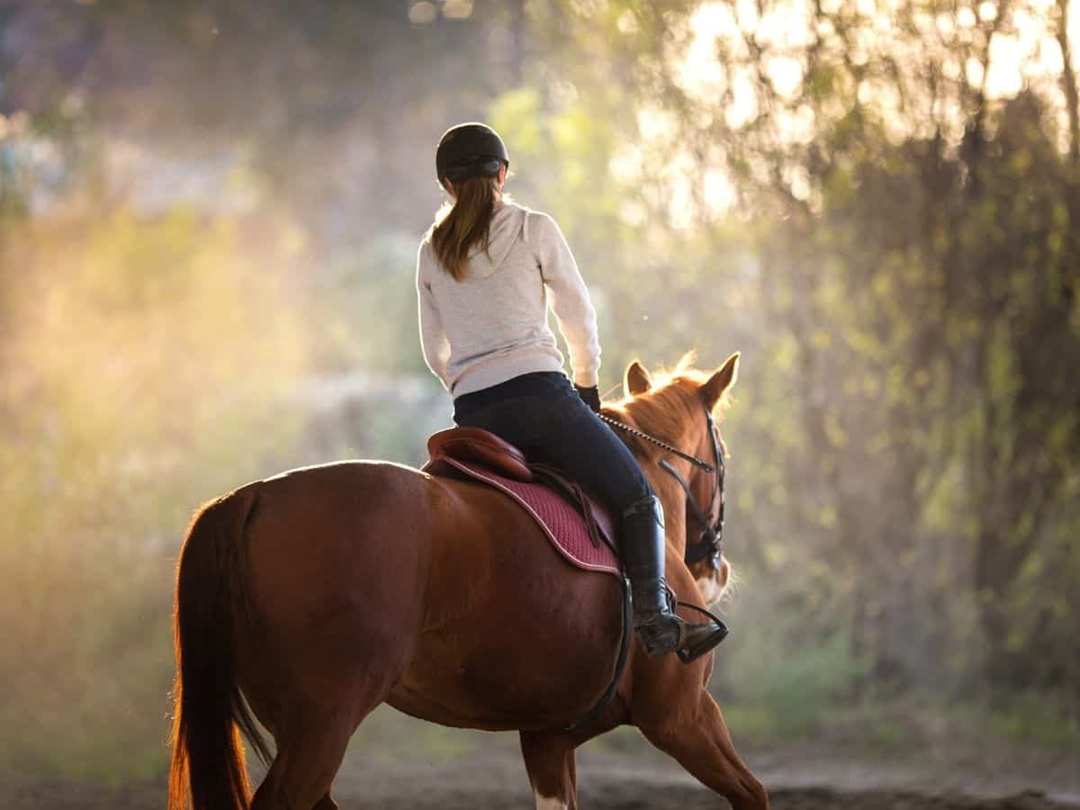 Woman riding brown horse at sunset