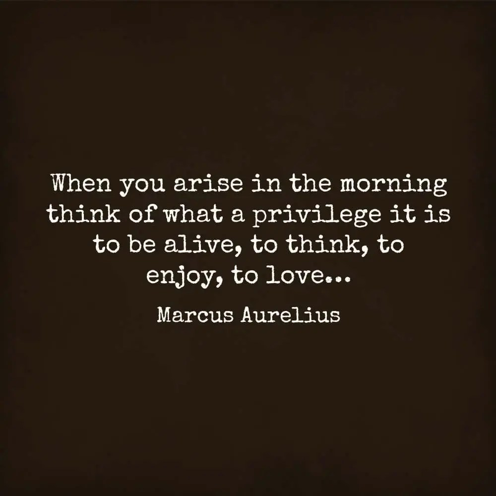 Be More Man Arguing About Waste No Aurelius Should What Marcus Be One Good Time