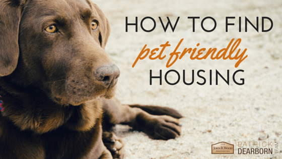 how to find pet friendly housing