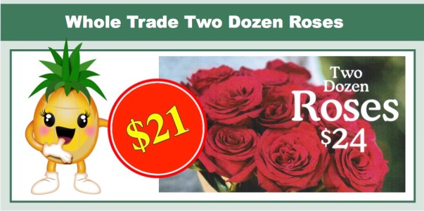 Whole Trade Two Dozen Roses