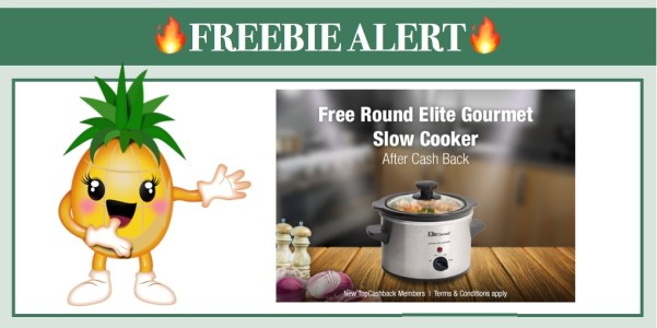 FREE Elite Gourmet Slow Cooker
