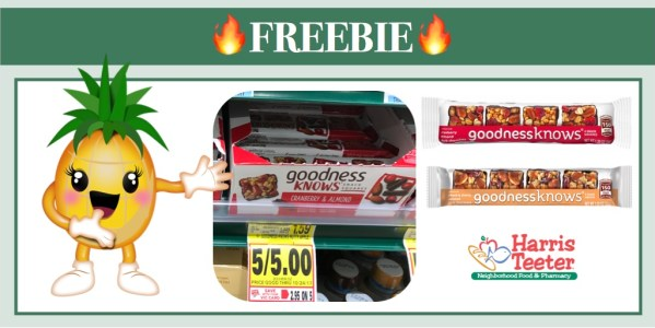 GoodnessKnows Snack Squares Coupon Deal