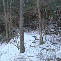 Blue Run Trail