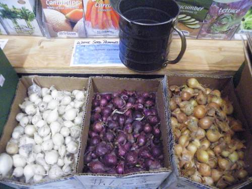 Spring planting bulbs, seeds and more at Burke Brothers Hardware in Raleigh