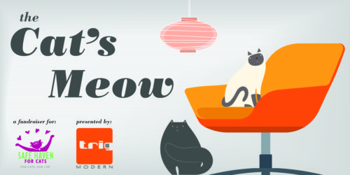 The Cat's Meow Auction