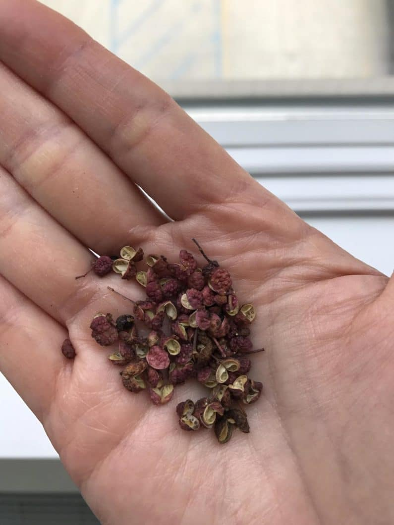 Sichuan Flower Peppercorns for Paleo Kung Pao Chicken