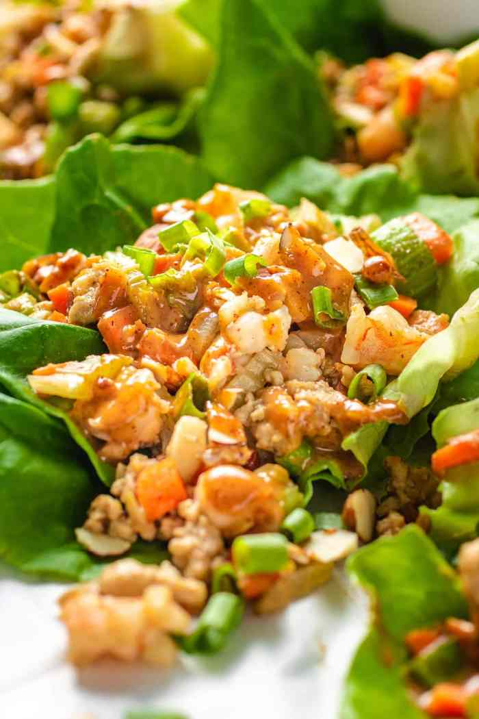 Close shot of the chicken lettuce wraps with sauce