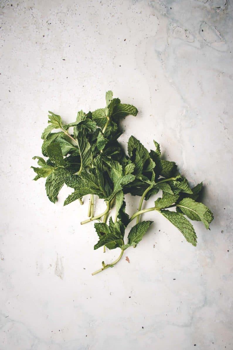 Fresh mint for watermelon salad