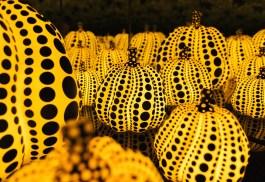 Yayoi Kusama Pumpkin Room Close Up