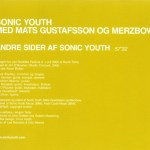 10 Releases From A Departing Year – Sonic Youth, Matts Gustafsson and Merzbow – Andre Sider Af Sonic Youth