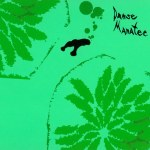 Animal-Collective-Danse-Manatee Artist Profile - Animal Collective