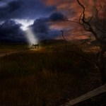 Tree-No-Leaves-Asorta-Story Download/Streaming Vault - Tree No Leaves, Tigon, Feastoffetus, Funeral Club