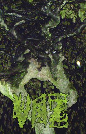 2011 Releases Highlight – Vaz – Chartreuse Bull (Damage Rituals / Sleeping Giant Glossolalia)