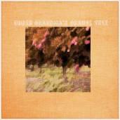 Treehouse-Arcade-Under-Grandmas-Orange-Tree-300x300 (Anti) EOTY - 20 Most Interesting Records From 2016 (Lightning Pill)
