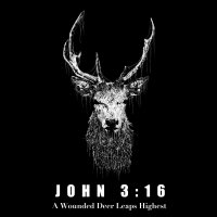 John 3 16 A Wounded Deer Leaps Highest