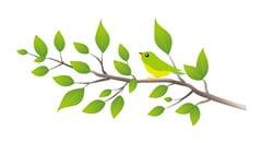 小枝と鳥-min
