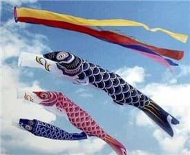 鯉のぼり3-min